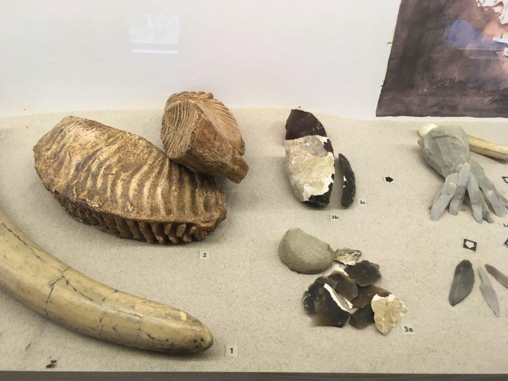 Cesta do pravěku aneb 6. A a 5. A navštívila Archeopark ve Všestarech